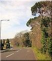 ST5576 : Avon Way, Bristol by Derek Harper
