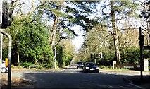 SU8265 : The junction of Nine Mile Ride and Heathlands Road by Steve Daniels