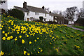 NY5123 : Cottages in Askham by Ian Taylor