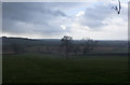 ST6639 : Hail storm on Small Down Farm by Peter Facey