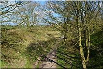 SK1460 : Tissington Trail seen from minor road bridge near Heathcote by David Martin
