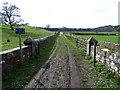 NZ1530 : Farm road below Witton Castle by Oliver Dixon