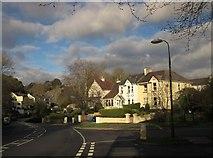 SX9065 : Houses on Teignmouth Road, Torquay by Derek Harper