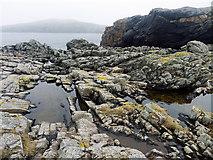 HU6872 : Clifftop beside Vogans Point, Housay by Julian Paren