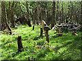 NZ3356 : Giant mushrooms at Washington Wetland Centre by Oliver Dixon