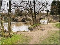 NY4724 : Pooley Bridge, River Eamont by David Dixon