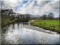 NY2523 : River Derwent, Downstream from Portinscale Bridge by David Dixon
