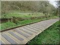 SE9886 : Derwent river valley by Pauline E