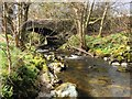 NY3921 : Aira Beck, Dockray Bridge by David Dixon