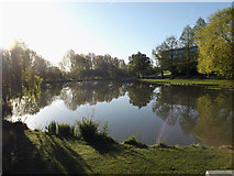 SU9850 : The Lake in the early morning sunshine by Adrian Cable