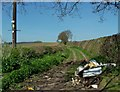 SO4778 : Fly-tipping on Back Lane, Onibury by Peter Evans