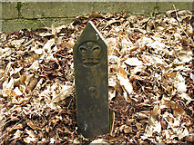 SU9768 : Windsor Great Park - Crown boundary marker by Stephen Craven