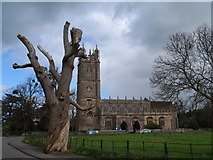 ST6390 : St Mary's church, Thornbury by Bikeboy