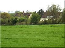 TM3569 : Houses on Mill Hill by Geographer