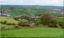 J0425 : Derelict cottage on Gordons Lane viewed from the Mountain Road by Eric Jones
