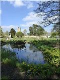 SP5206 : Botanic Garden, Oxford by pam fray