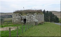 NY9398 : Remains of a Bastle by Russel Wills
