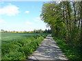TL1131 : Mill Lane, Hexton by Humphrey Bolton