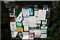 SO4071 : Adforton Parish Council notice board by John Winder