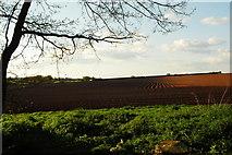 SO5925 : Ploughed field, Ross on Wye by John Winder