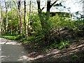 SD4214 : Kingfisher Hide, Martin Mere WWT Centre by David Dixon