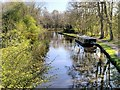 SD5810 : Leeds and Liverpool Canal, View South from Arley Bridge by David Dixon
