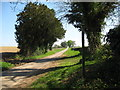 ST9397 : Path to Rodmarton Barrow 2-Glos by Martin Richard Phelan