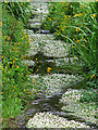 NO0300 : Mill lade by William Starkey