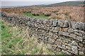 NY7267 : Dry Stone Wall by Mick Garratt