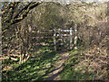 SS8677 : Kissing gate in the north of Merthyr Mawr Warren by eswales