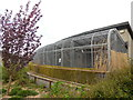 TQ4714 : Aviary at Raystede by Paul Gillett