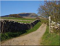 SD8172 : Horton Scar Lane by Ian Taylor