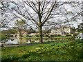 TQ8353 : Leeds Castle by Paul Gillett