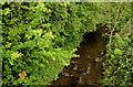 J3973 : The Knock River, Belfast - April 2014(1) by Albert Bridge