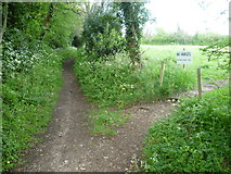 TQ4262 : The entrance to Bogey Lane by Marathon