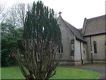 SZ0095 : Brief perambulation of St John, Broadstone (viii) by Basher Eyre