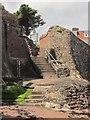 SX9062 : Steps, Institute Beach by Derek Harper