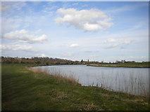 SK6443 : River Trent near Burton Joyce by Richard Vince