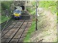 NS4871 : Train entering Boquhanran tunnel by M J Richardson