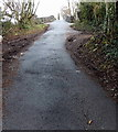 ST2589 : Steep ascent to Harry Roberts canal bridge near Pontymister by Jaggery