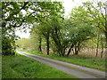 TF6311 : Tottenhill Row Common by Richard Humphrey