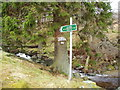 NO4179 : Start of path to Glen Clova by Douglas Nelson