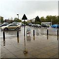 SJ9291 : Heavy rain at Morrisons by Gerald England