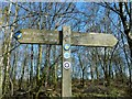 NS3083 : Footpaths signpost by Lairich Rig