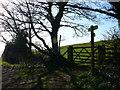 SJ0874 : Llwybr Clawdd Offa / Offa's Dyke Path by Ian Medcalf