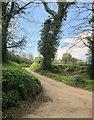 SE2966 : Lane to Yarrows Hill by Derek Harper