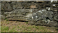 NS2708 : Mystery Carvings at Crossraguel Abbey by Mary and Angus Hogg