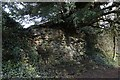 SU6362 : Uncovered Wall by Bill Nicholls