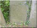 SK7536 : Belvoir Angel, Granby churchyard by Alan Murray-Rust