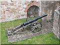 NU0053 : Cannon, Berwick Ramparts by N Chadwick